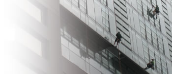 industrial abseilers cleaning high rise windows